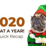 A Recap of 2020 – Thanks for a great year!